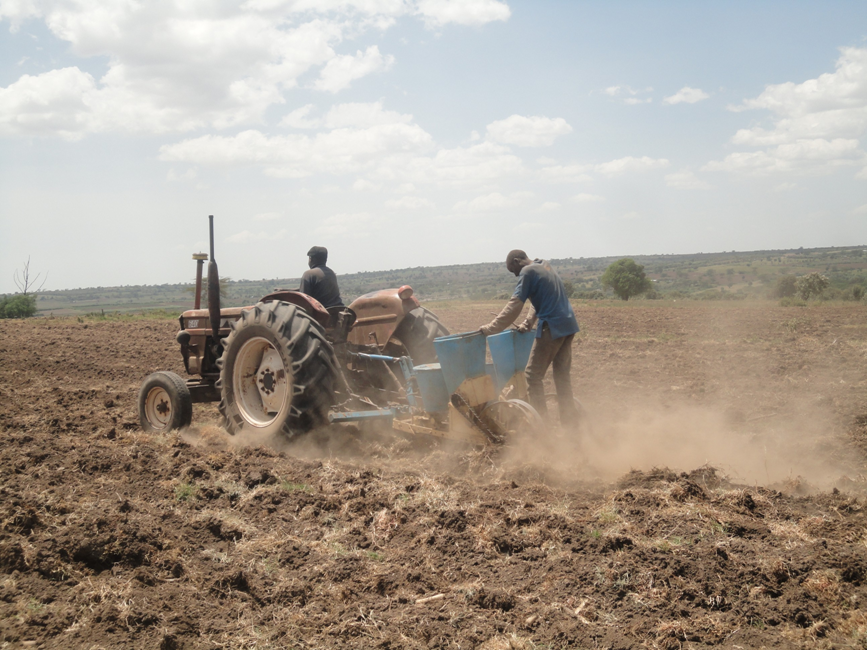 A tractor planting in one of the beneficiary's land